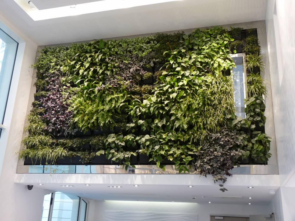 Green Walls · Interior Living Wall With Company Logo